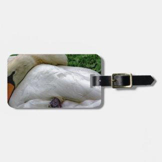 Swan 1 bag tag
