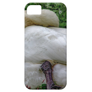 Swan 1 iPhone 5 cover