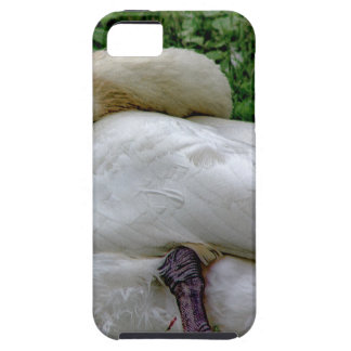 Swan 1 iPhone 5 covers