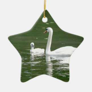 Swan and her Cygnet Ceramic Ornament