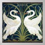 Swan and Rush and Iris wallpaper Poster