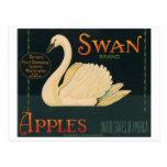 Swan Brand Apples Vintage Crate Label Postcard