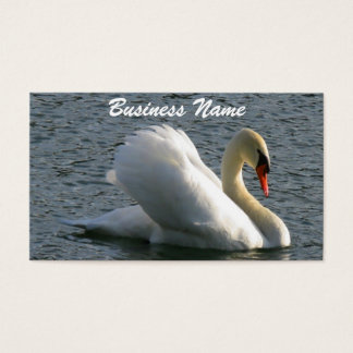 Swan Business Card