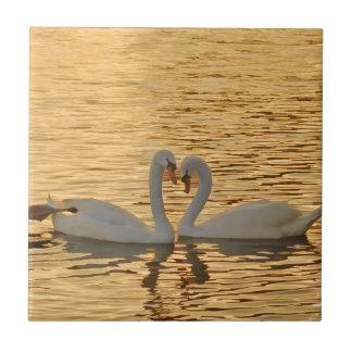 Swan Couple Meeting at Sunset Photograph Ceramic Tiles