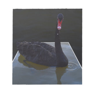 Swan,_Droplets,_In_Pond,_ Notepad
