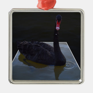 Swan,_Droplets In The Pond,_ Silver-Colored Square Ornament