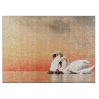 Swan family boards