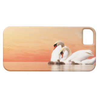 Swan family iPhone 5 covers