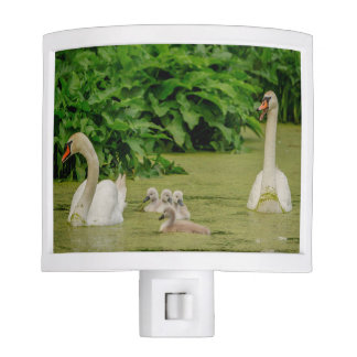 Swan Family Night Light
