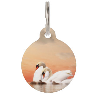 Swan family pet ID tag