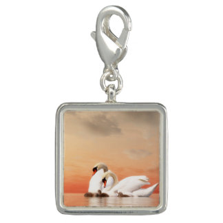 Swan family photo charms