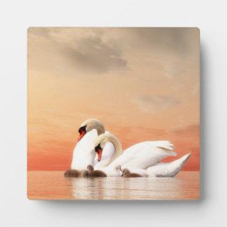 Swan family plaque