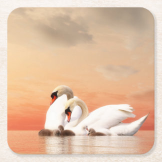 Swan family square paper coaster