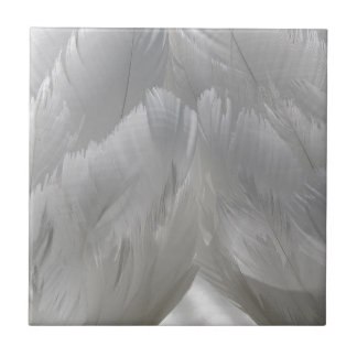 Swan Feathers Tile