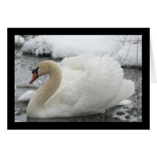 Swan King Card