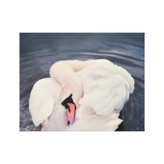 Swan · Lake Canvas Print