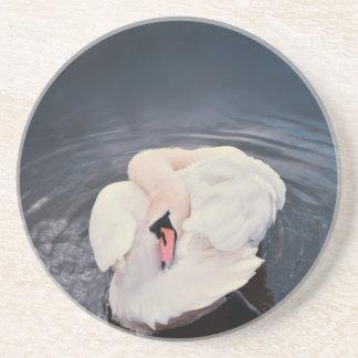 Swan · Lake Coaster