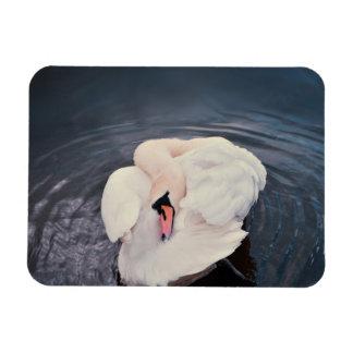 Swan · Lake Magnet