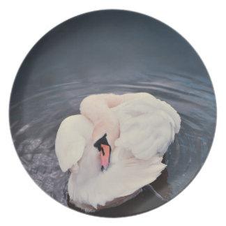 Swan · Lake Plate