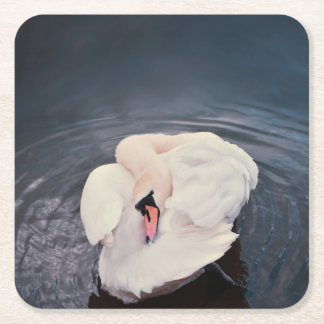 Swan · Lake Square Paper Coaster