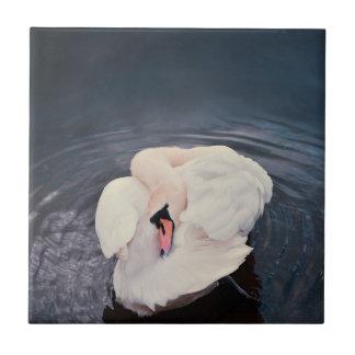 Swan · Lake Tile