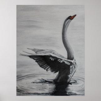 Swan (Left side) Poster