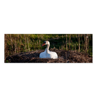 Swan on nest business card template