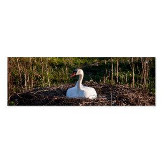 Swan on nest mini business card