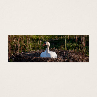 Swan on nest mini business card