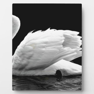 Swan On The Lake Plaque