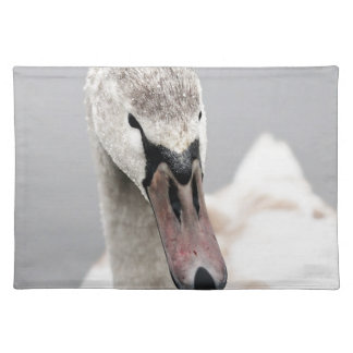 Swan Proud To Be A Swan Pride Water Bird Nature.jp Placemat