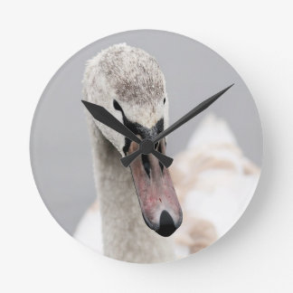 Swan Proud To Be A Swan Pride Water Bird Nature.jp Round Clock