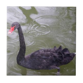 "Swan Small (4.25"" x 4.25"") Ceramic Photo Tile"