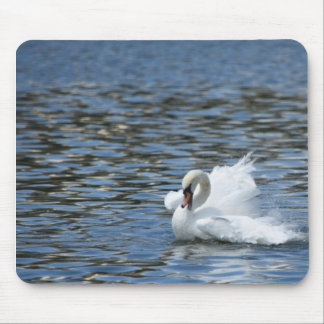 Swan Splashing in the Water Mouse Pad