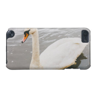 Swan Swimming In A Lake, Animal Photograph iPod Touch (5th Generation) Cases