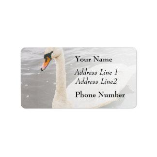 Swan Swimming In A Lake, Animal Photograph Label