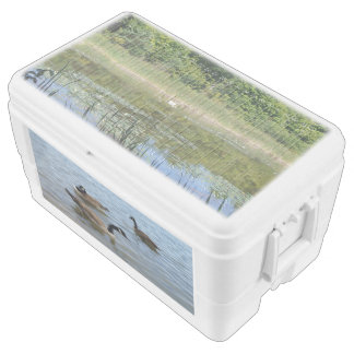 Swans And Geese, 48 Quart Duo Deco Cooler