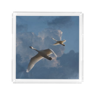 SWANS IN FLIGHT ACRYLIC TRAY