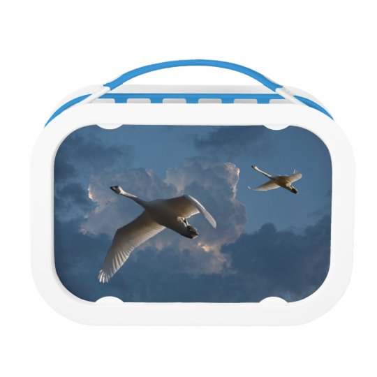 SWANS IN FLIGHT LUNCHBOXES