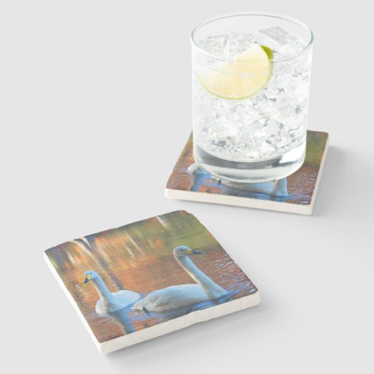 Swans on a Pond Stone Coaster