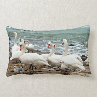 Swans on the beach. lumbar pillow
