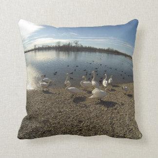Swans pillow