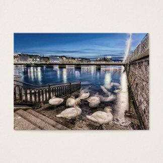 Swans shadows at Geneva lake, Switzerland Business Card