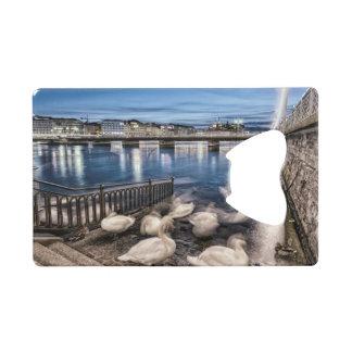 Swans shadows at Geneva lake, Switzerland Credit Card Bottle Opener