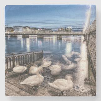 Swans shadows at Geneva lake, Switzerland Stone Coaster
