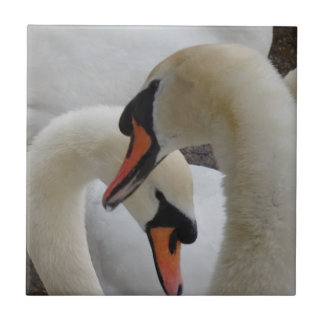 "Swans Small (4.25"" x 4.25"") Ceramic Photo Tile"