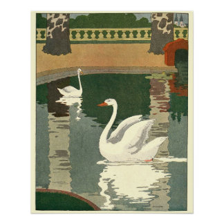 Swans Story Time Animal Perfect Poster