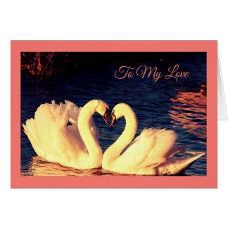 Swans Valentine's Day Card