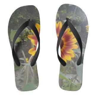 Swazie Daisy Flip Flops