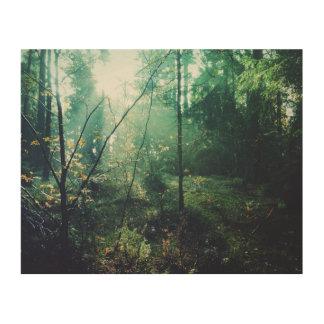 Swedish Forrest Wood Print